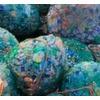 Mikroplastik – nicht nur ein Problem für die Meere