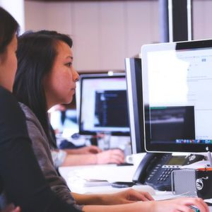 Anwendungsentwickler in jedem vierten Unternehmen