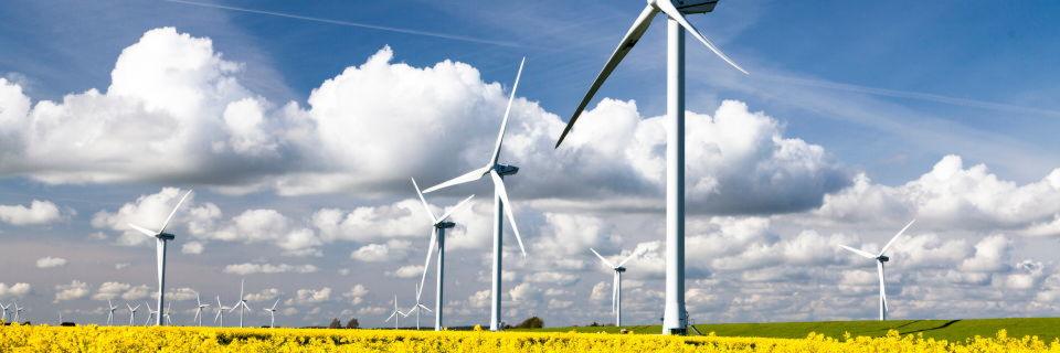 Nordfriesland: Jede Menge regenerative Energie