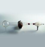 Vor 120 Jahren ist dem Physiker Karl Ferdinand Braun (1850 – 1918) das erste Experiment mit der Kathodenstrahlröhre gelungen. Er experimentierte mit einer Variante der vom britischen Physiker William Crookes erfundenen Schattenkreuzröhre, mit der die sogenannten Kathodenstrahlen studiert werden konnten. Bei dieser größtenteils luftleeren, konisch geformten Glasröhre befindet sich am schmalen Ende die Kathode. Die Anode sitzt im vorderen Drittel der Röhre. Die hohe Spannung, die an der Kathode anliegt, sorgt dafür, dass die Elektronen (die man damals noch nicht als solche kannte) mit hoher Geschwindigkeit durch die Röhre flitzen. Aufgrund ihres hohen Tempos verfehlt der Großteil der Elektronen die kreuzförmige Anode und trifft auf der Glaswand am Ende der Röhre auf. Dabei entsteht ein Glüheffekt. Durch das Glühen wird sichtbar, wo die Elektronen auf das Glas auftreffen. Auf seine Erfindung, die nach ihm benannte Braunsche Röhre, gehen u. a. der Röhrenfernseher und das Oszilloskop zurück. // FG