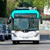Elektrobusse bleiben Randerscheinung