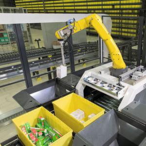 Der Pick-it-Easy Robot von Knapp entnimmt den Artikel und übergibt ihn an den Zielbehälter.