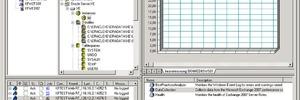 Leistungsüberwachung aller Komponenten der IT-Infrastruktur und SLA-Garantie