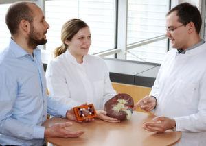 Künstliche Organe könnten Tierversuche ersetzen