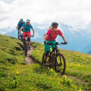 Bosch: Elektro-Mountainbike