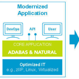 KI der Software AG auf IBM-Mainframes