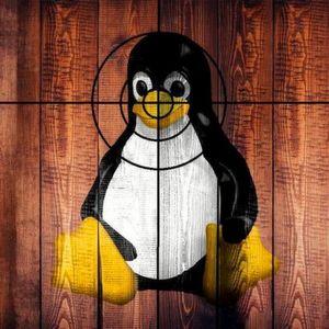 Linux auf IoT-Geräten: Schützen Sie den Pinguin!