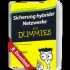 Sicherung hybrider Netzwerke