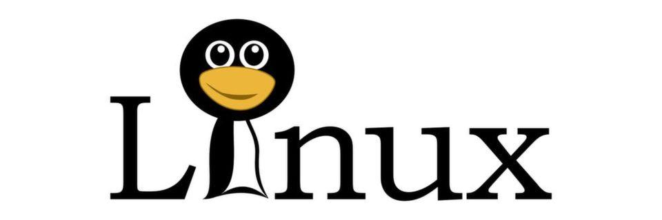 Will man den Microsoft SBS ersetzen, stehen auch einige Linux-Alternativen zur Verfügung.