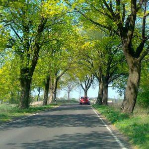 Mietwagenanspruch auf dem Land auch bei geringer Nutzung