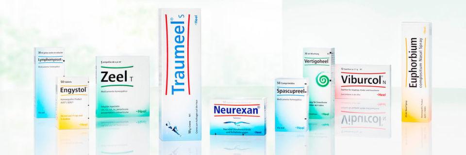 Arzneimittelhersteller Heel vertraut für den weltweiten Versand seiner Dokumente auf EVA (Export Versand Abwicklungssystem) des Göttinger Versandspezialisten Anton Software.