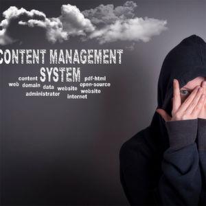 Entwicklung und Betrieb von Content-Management-Lösungen