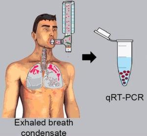 Das Lungengewebe gibt RNA-Moleküle an die Atemluft ab, die aufgefangen und mittels einer Polymerase-Kettenreaktion (qRT-PCR) vervielfältigt werden können.