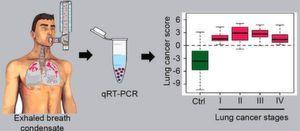 Das Lungengewebe gibt RNA-Moleküle an die Atemluft ab, die aufgefangen und mittels einer Polymerase-Kettenreaktion (qRT-PCR) vervielfältigt werden können. Anhand der unterschiedlichen Mengen abgegebener RNA-Moleküle lassen sich Krebszellen in der Lunge aufspüren.