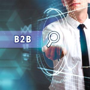 Wege zu einem erfolgreichen B2B-Webshop