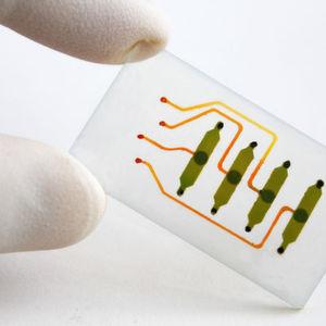Bio-Chips für die Wundheilung