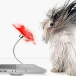 Für die warmen Tage im Büro bietet www.yellowoctopus.com.au einen USB-Ventilator für rund 20 Euro an.
