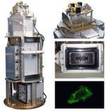Abb. 2: FLUMIAS, links: Komplettaufbau, rechts oben: eingebautes Slide (Detailansicht), mitte rechts: eingebautes Slide von unten, rechts unten: Fluoreszenzaufnahme einer SH-SY5Y mit GFP-Aktin.