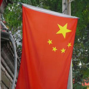 China will eigenes E-Auto-Tempo bremsen