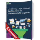 Objektspeicher als Lösungsansatz für Large Data