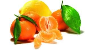 1 Zitrusfrüchten wird ein hoher Gehalt an Antioxidantien nachgesagt.