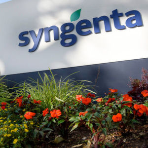 Syngenta Announces Changes in Executive Committee