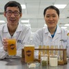 Researchers Brew Probiotic Beer