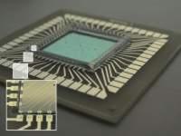 Der 3D-Biochip ist vielseitig einsetzbar.