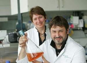 Dr. Olga Golyshina (links) und Prof. Peter Golyshin mit ihrem purpurroten Untersuchungsobjekt Ferroplasma acidiphilum, das auch unter extremen Bedingungen Enzymaktivität zeigt.