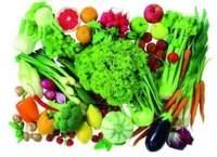 Lebensmittelwarnsystem meldet Kontaminationen in Lebens- und Futtermitteln