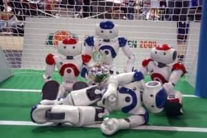 Nao-Roboter des DFKI-Teams B-Human,