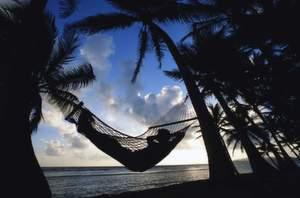 Manches Prouduktsegment lässt Urlaubsträume wahr werden.