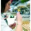 So verbessern Sie die Prozesssicherheit und Verfügbarkeit von pH-Sensoren