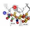Auf dem Weg zur großtechnischen Nutzung von Hydrogenasen zur Wasserstoffproduktion