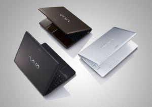 Sonys Vaio- sowie Professional-Produkte sollen ab 1. April nur noch Ingram Micro und Tech Data in Deutschland vertreiben.