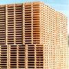 Holzpackmittel-Industrie erwartet Plus für 2010