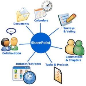 Die Sharepoint-Revolution hat bislang nicht stattgefunden. Zehn Punkte, warum nicht.