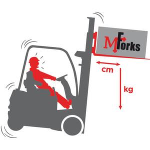 Keine böse Überraschungen: MForks misst das Gewicht und den Schwerpunkt der Ladung. Bild: Ravas