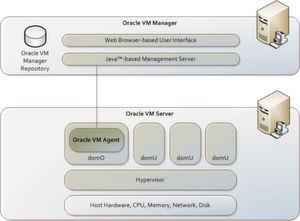 Die Komponenten von Oracle VM 3.0; der Oracle VM Server 3.0 benötigt x86er Hardware mit 64-Bit und unterstützt sowohl 64-bit- als auch 32-bit-Gast-Systeme.