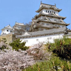 Kirschblüten und traditionelle Architektur: Die Logistikimmobilien in Osaka werden sich wohl kaum von europäischen Projekten unterscheiden. Bild: bildpixel http://www.pixelio.de/media/446482
