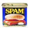 Die Top 5 der Spam-Gefahren