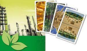 Integrierte Bioraffinerien sollen einen ganzen Fächer an Nachwachsenden Rohstoffen verarbeiten können.