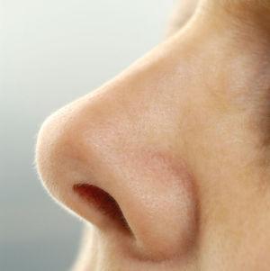 Diverse unterschiedliche Gerüche zu unterscheiden, ist für die menschliche Nase kein Problem. (Quelle: Helios-Kliniken)