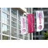 Evonik baut für rund 500 Millionen Euro Methionin-Großkomplex in Singapur