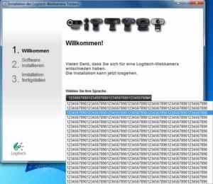 Trotz einiger Programmierpatzer lief der Webcam-Treiber von Logitech stabil und bot zahlreiche Extras.