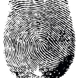 Dermalog ersetzt Passwort und User-Name durch Fingerabdruck-Identifizierung. (Tres Delinquentes - Fotolia)