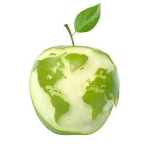 Wer hinterher nicht in den sauren Apfel beißen will, sollte bei Patentanmeldungen frühzeitig überlegen, ob ein Produkt nur in Europa oder auch in den USA geschützt werden soll