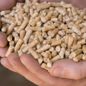 Fig. 1: Wood pellets are by far the most popular biomass fuel.