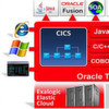 Orcale Application Server Tuxedo 12 c wird Mainframe-schnell
