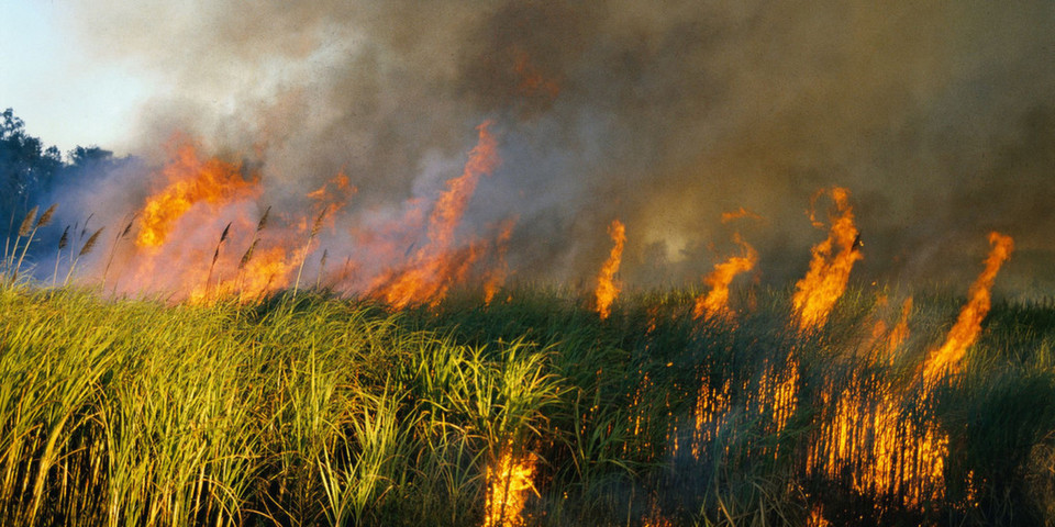 Die Risikowahrnehmung in Unternehmen lässt noch immer zu wünschen übrig. Wenn die Hütte erst brennt, ist es definitiv zu spät für eine Disaster-Recovery-Strategie.